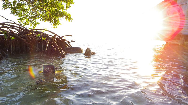 art contemporain a Guadeloupe, Biennale de la Biche, art a Guadeloupe, art contemporain guadeloupe, Ilet la biche, contemporary art in Guadeloupe, caribbean contemporary art, art contemporain de la Caraïbe